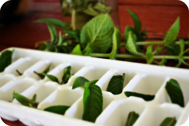 Kitchen Hack: Preserve Fresh Herbs in Ice Cube Trays