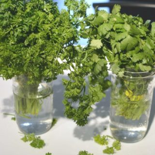 Tuesday Tip: Store Fresh Herbs
